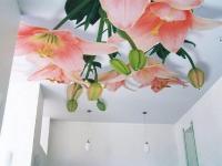 Натяжные потолки в детской комнате_16