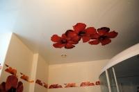 Натяжные потолки в ванной комнате_12