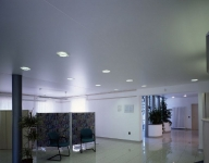 Натяжные потолки в офисе, кабинете_19