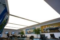 Натяжные потолки в офисе, кабинете_30