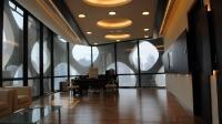 Натяжные потолки в офисе, кабинете_33