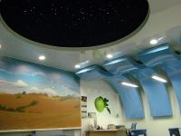 Натяжные потолки в офисе, кабинете_34