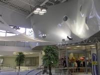 Натяжные потолки в магазине, торговом центре_16