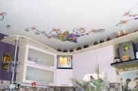 Натяжные потолки с фотопечатью_22