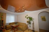Натяжные потолки в зале, гостинной_28