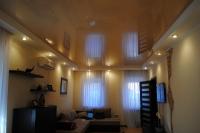 Натяжные потолки в зале, гостинной_33