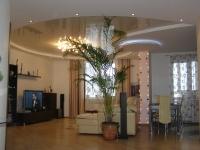 Натяжные потолки в зале, гостинной_38